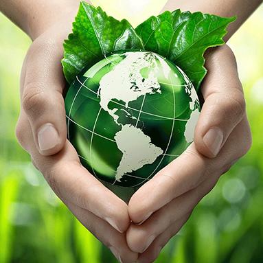 Устойчивост